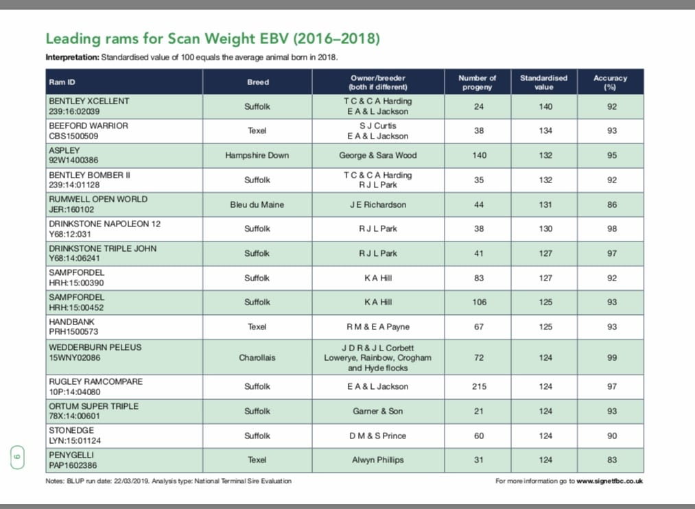 Leading rams for Scan Weight EBV (2016-2018)